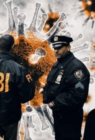 Начато расследование возможного сокрытия истинного числа жертв COVID-19 в штате Нью-Йорк
