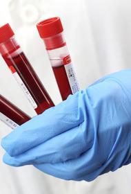 В России за сутки выявили 13 447 новых случаев заражения COVID-19
