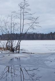 Во Владивостоке 11-летний школьник спас друга, провалившегося под лед озера