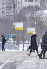 Синоптик Позднякова предупредила о «периоде снегопада» в Москве