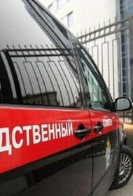 СК будет проверять высказывания Навального в ходе процесса по делу о клевете на ветерана