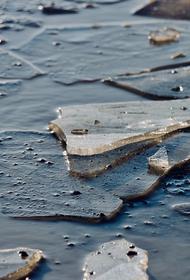 Два десятка человек спасли в Таганроге с оторвавшейся льдины