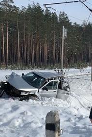 В ДТП с поездом в Брянской области погибли три человека
