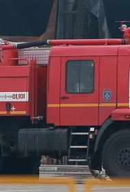 Ребенок погиб при пожаре в Новой Москве