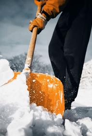 В Ленобласти бизнесмен устроил стрельбу из-за уборки снега