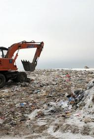 Новые мусорные полигоны появятся в Хабаровском крае