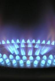 Россия и Румыния договорились досрочно расторгнуть контракт на транзит газа