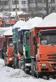 Синоптики предупредили о возобновлении сильного снегопада в Москве 24 февраля