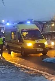 В Улан-Удэ водитель «Лексуса» сбил насмерть детей