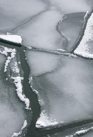 Братья 6 и 11 лет провалились под лед в Вольске, оба погибли