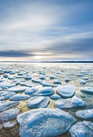26 рыбаков спасли с отколовшейся льдины в заливе Охотского моря