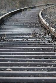 В Нижегородской области «Сапсан» насмерть сбил женщину, переходившую железную дорогу в наушниках