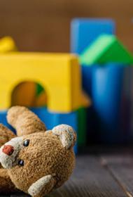 Почему я не отдам своего малыша в детский сад безвидеонаблюдения