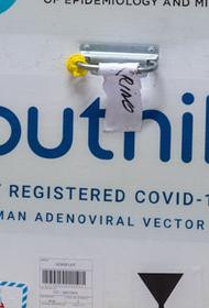 В Молдавии одобрили российскую вакцину «Спутник V»