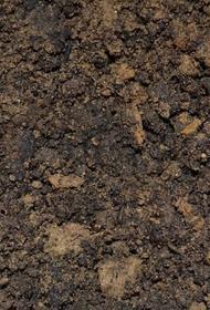 На Кубани ребёнка засыпало землёй из грузовика