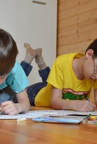 Депутат Смолин предложил ввести новую выплату семьям с детьми