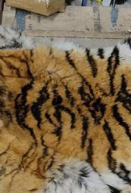В Хабаровске задержали убивших амурского тигра браконьеров