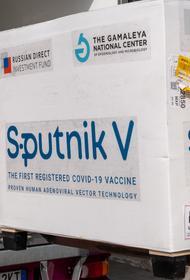 Белоруссия запустит промышленное производство вакцины «Спутник V» в конце марта