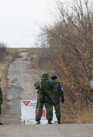 Глава МИД ДНР резко отреагировала на «мирный план» Украины по Донбассу