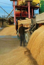 Подъем экспорта продовольствия на фоне роста цен внутри страны