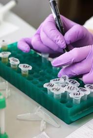 Заболеваемость COVID-19 выросла за неделю в мире на 2%