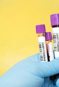 В Германии за сутки выявили более 9 тысяч случаев заражения COVID-19