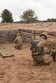 Бойцы ДНР уничтожили минометный расчет морпехов Украины в ответ на новые удары ВСУ