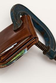 Федеральная налоговая служба получит расширенный доступ к банковской тайне россиян