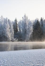 В Волгоградской области дети провалились под лед