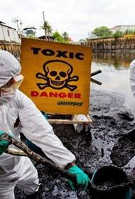 «Часы судного дня»: В Ярославской области в почве обнаружены токсичные отходы, виновник определён, размер вреда уточняется