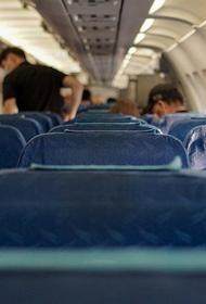 Пьяная пассажирка устроила дебош в самолете, летевшем из Новосибирска в Якутию