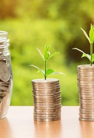 В Союзе пенсионеров назвали категории граждан, которые имеют право на повышенные выплаты и льготы