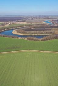 На развитие растениеводства на Кубани в 2021 году направят три миллиарда рублей