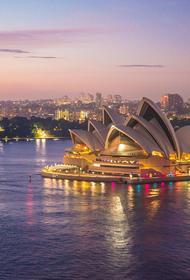 Австралия: серфер не заметил акулу на Сиднейском пляже
