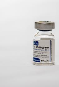 Власти Мексики задержали партию поддельной вакцины против коронавируса «Спутник V»