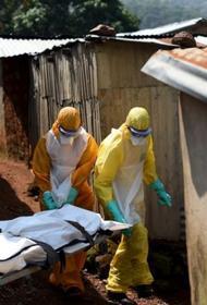 Ситуация с коронавирусом в Африке вызывает серьёзную тревогу