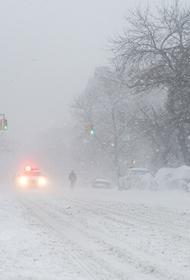 Колокольцев подписал приказ о награждении госавтоинспекторов, которые спасли людей на трассе в условиях снежной бури