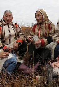 Северный народ нганасан из 700 человек находится на грани вымирания