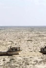 Аральская катастрофа - первый случай в истории, когда человек «убил» море