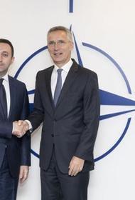 EADaily: НАТО втягивает Грузию в войну против России