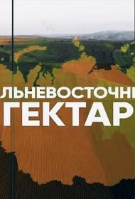 Второй «Дальневосточный гектар»: кому он нужен