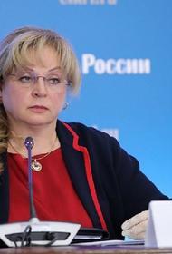 Памфилова считает реальной перспективу дистанционного голосования