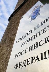 Бастрыкин поручил провести проверку по высказываниям «скопинского маньяка»