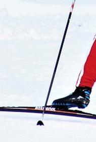 Провалившегося под лед лыжника спасли в Москве