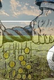 Футбол за наш счет: кто платит за поражения российских клубов в Европе