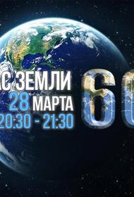 WWF: «России нужна открытость экологической информации»