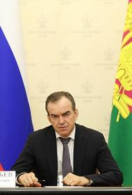 Губернатор Кубани предложил увеличить штрафы арендаторам земель лесного фонда