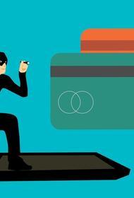 Телефонные мошенники обманули экс-министра экономики по схеме «вашим деньгам угрожает опасность, переведите на другой счет»