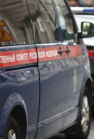 РИА Новости: в Пензенской области задержали главу администрации района  Козина
