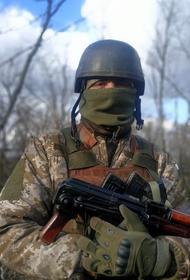 Киевский журналист Бутусов: «российские войска» уничтожили четырех бойцов ВСУ в Донбассе